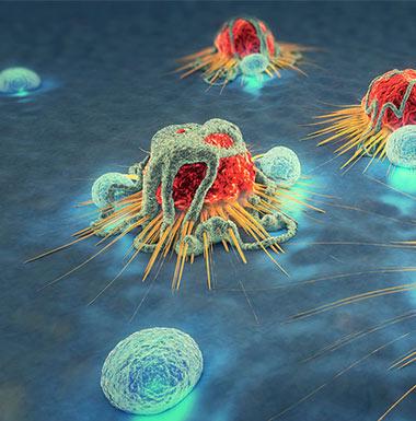 免疫治疗相关Biomarker