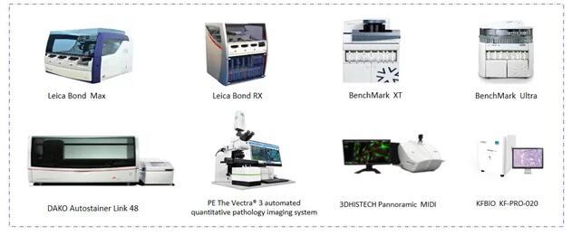 迈杰转化医学病理平台部分仪器展示