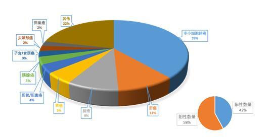 迈杰转化医学PD-L1检测数量多达数万例