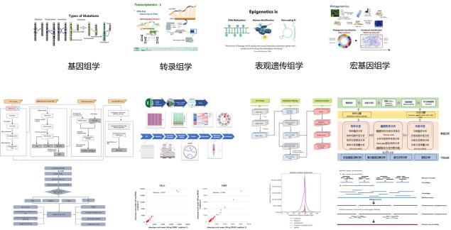 多种经系统验证的数据分析系统