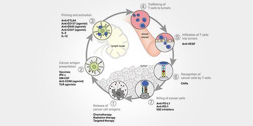 免疫治疗生物标志物