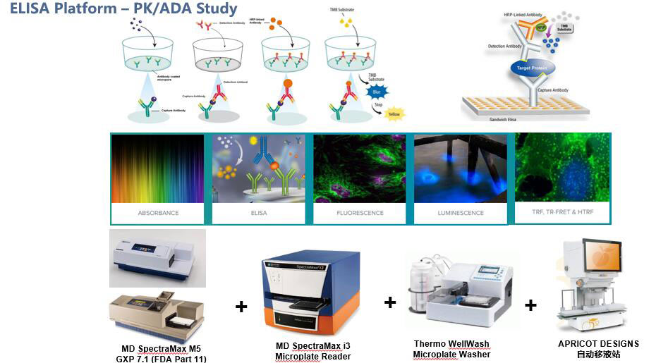 大分子生物分析平台