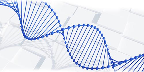 生物标志物发现及验证