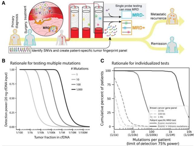 迈杰分享第01期:早期乳腺癌MRD超灵敏检测方法